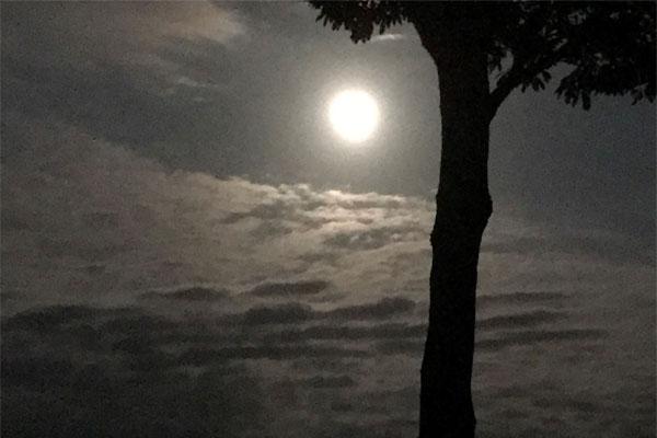 中秋の名月-星空情報-